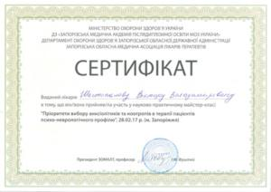 Shestopalov03
