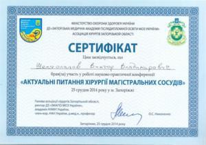 Shestopalov04