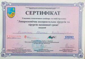 Сертификат Кичангин Евгений