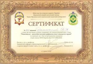 Сертификат Дамаскина Татьяна