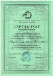 Сертификат Каратинина Юлия