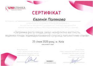 Polyakova02