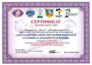 Galushka12