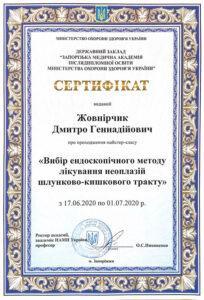Сертификат Жовнирчик Дмитрий Геннадьевич