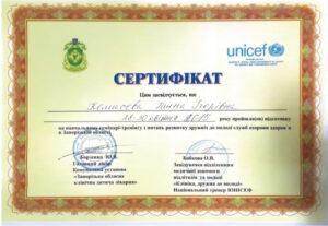 Сертификат Комысева Анна Игоревна