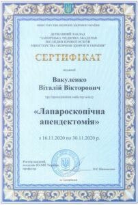 Вакуленко Виталий Викторович сертификат