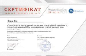 Сертификат Жук Елена Анатольевна